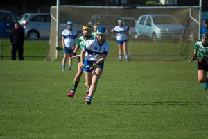 Camogie 5
